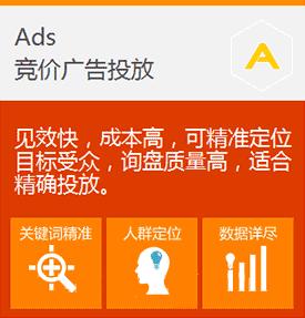 Ads竞价广告投放